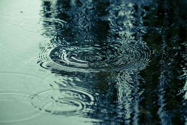 2014年-雨